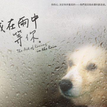 我在雨中等你 (The Art of Racing in the Rain)
