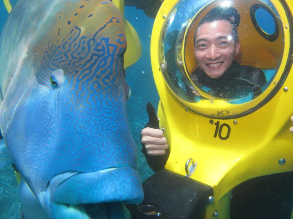 幸運地遇到了蘇眉魚(曲紋唇魚,學名:Cheilinus undulatus),超大隻的魚,色彩鮮艷,而且溫和,還觸摸到它了,滑滑的… ^____^