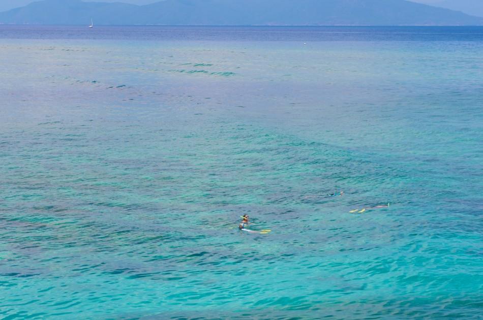 Green Island的四週都可以看見在浮潛的遊客~