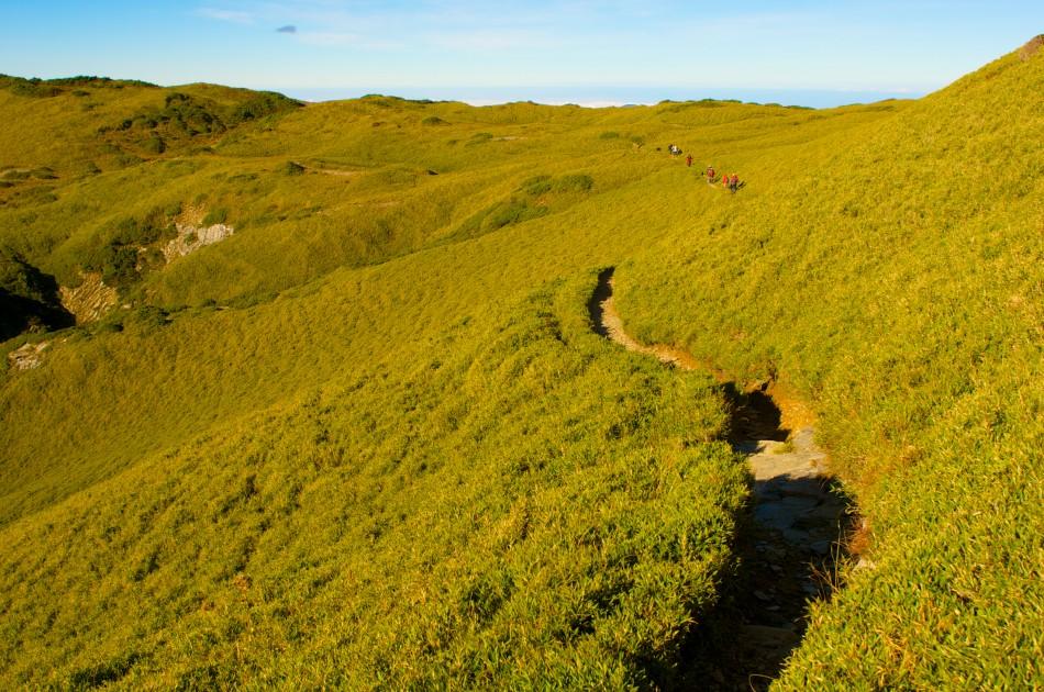 奇萊主北峰上的美麗高山草原~