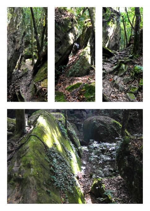 加里山沿途地貌多變,有許多巨石散落,有些甚至要從裂縫中穿越!