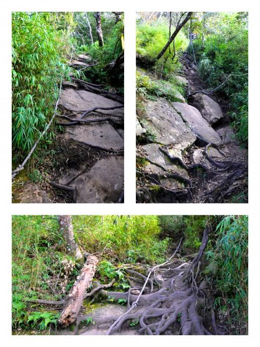 加里山後半段的路程都是無止盡的拉繩陡上,很過癮的!