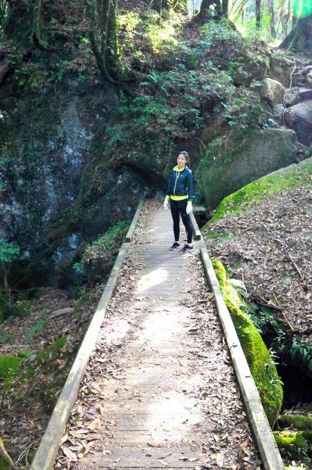 橋的另一端是山壁!不懂啊!姐真的不懂啊!